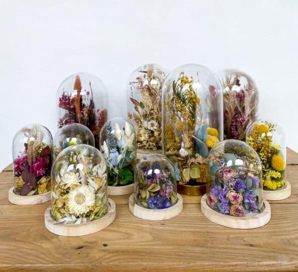 Cloche de fleurs séchée